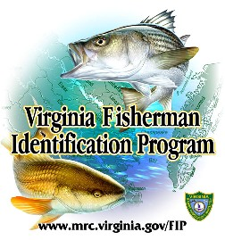 Fisherman Identification Program Logo